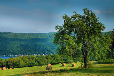 Keuka Photograph - Pear Tree And Hayfield by Steven Ainsworth
