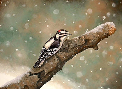 Maine Winter Painting - Pecking Through Rain Sleet And Snow by Carole Rickards