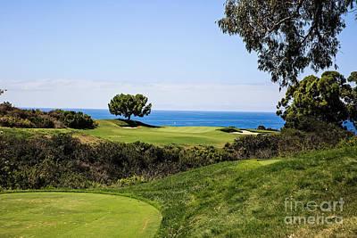 Photograph - Pelican Hill #16 South Course by Scott Pellegrin