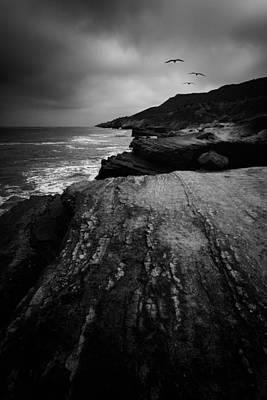 Birds In Flight Photograph - Pelicans Three by Joseph Smith