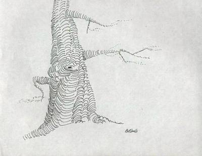 Drawing - pen and ink Tree by B L Qualls