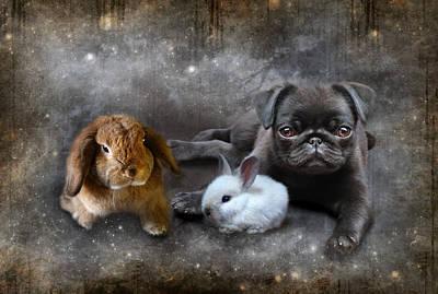 Rabbit Digital Art - Penelope Prudance And The Pug by Julie L Hoddinott