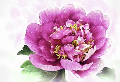 Flower Photograph - Peony Elegance by Marcia Colelli