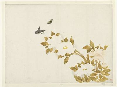 Flower Painting - Peony Flowers And Butterflies by Anonymous