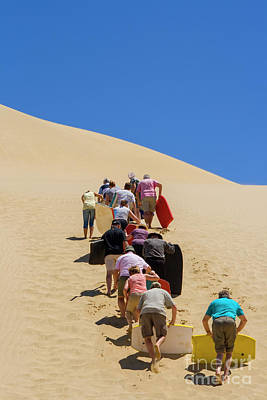 90 Mile Beach Photograph - People Pushing Sandboards Up The Dune by Patricia Hofmeester