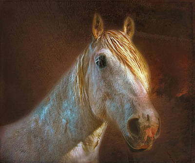 Agriculture Mixed Media - Percheron  by Bellesouth Studio