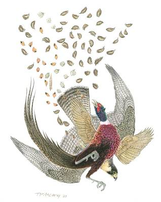 Arial Drawing - Peregrine Falcon And Ringneck Pheasant by Tim McCarthy