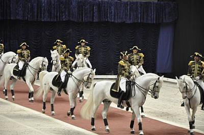 Performing Stallions Print by Vijay Sharon Govender