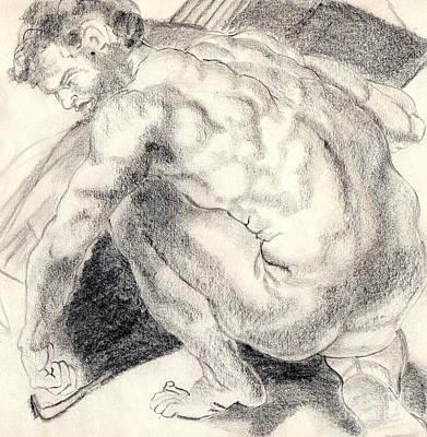 21st Drawing - Peter by Harriet Davidsohn