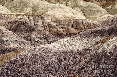 Petrified Forest Arizona Photograph - Petrified Forest National Park 2 by Bob Christopher