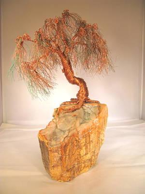 Petrified Wood-willow Original by Judy Byington