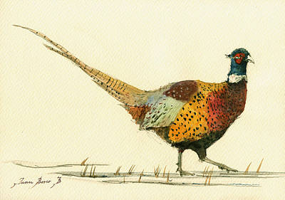 Pheasant Painting - Pheasant Bird Art by Juan  Bosco