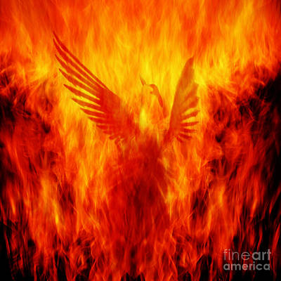 Flaming Photograph - Phoenix Rising by Andrew Paranavitana