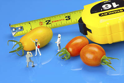 Photography Of Tomatoes Little People On Food Print by Paul Ge