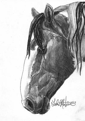 Llmartin Drawing - Picasso by Linda L Martin