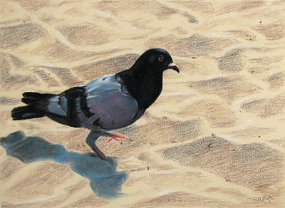 Pigeon Footed Original by Christopher Reid