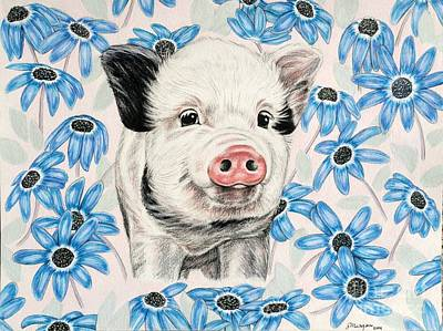 Piglets Drawing - Piglet by Meagan Richards