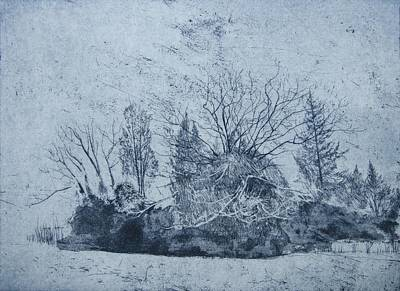 Blue And Grey Drawing - Pinetum  Cammo by Calum McClure
