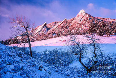 Photograph - Pink And Blue Sunrise by Greg Summers