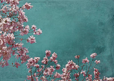 Green Photograph - Pink Apple Blossoms On Teal Blue Green Sky by Brooke Ryan