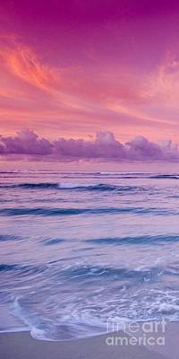 Waikiki Photograph - Pink Bliss -  Part 1 Of 3 by Sean Davey