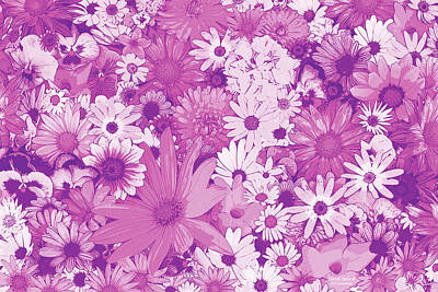 Pink Flowers Print by JQ Licensing