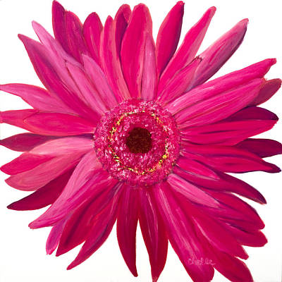 Pink Gerber Print by Chelle Fazal