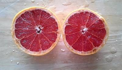 Grapefruit Digital Art - Pink Grapefruit by LaVerne Iverson