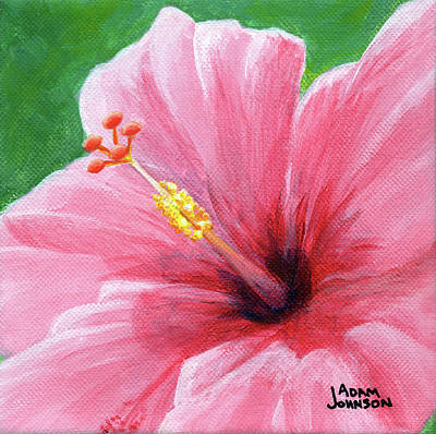 Hawaii Painting - Pink Hibiscus by Adam Johnson