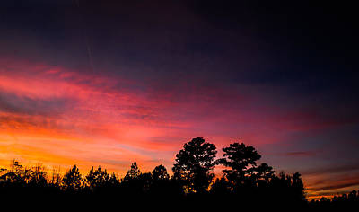 Autumn Photograph - Pink Hues Fill The Sky by Shelby Young