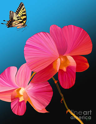 Orchids Digital Art - Pink Lux Butterfly by Rand Herron