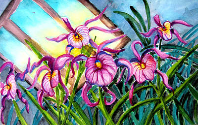 Pink Orchids Under Skylight Print by Helen Kern