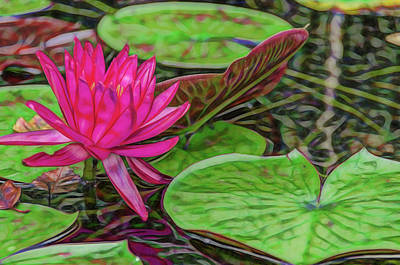 Pink Passion Waterlily Artistic Rendering Print by Photo Captures by Jeffery