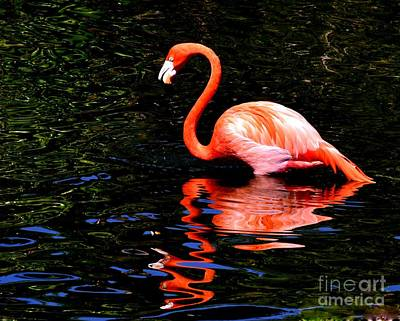 Tickled Pink Photograph - Pink Reflection by Lisa Renee Ludlum
