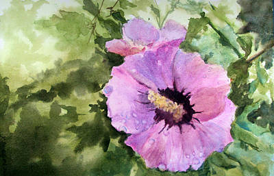 Rose Of Sharon Painting - Pink Rose Of Sharon by Katherine  Berlin