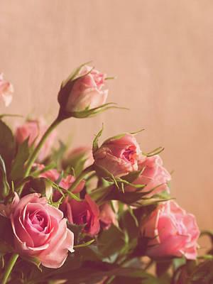 Flower Design Photograph - Pink Roses by Wim Lanclus