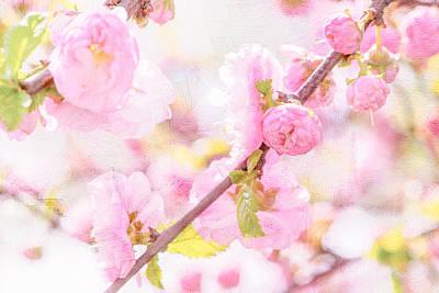 Pink Sakura Flowers Print by Alexander Senin