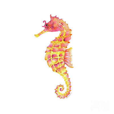Pink Yellow Seahorse - Square Print by Amy Kirkpatrick