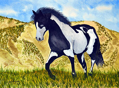 Pinto Painting - Pinto 1 by Daniel Butterworth