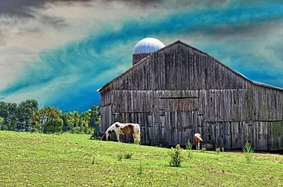 Country Scenes Photograph - Pinto Summer by Jan Amiss Photography
