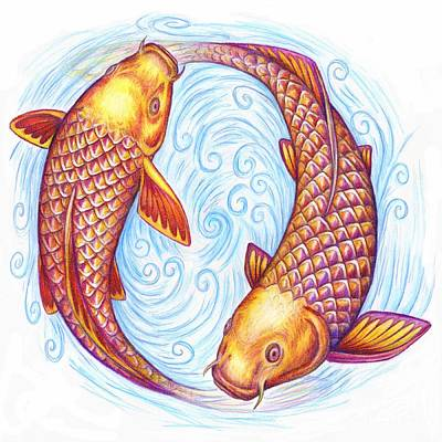 Pisces Fish Drawing - Pisces by Rebecca Wang