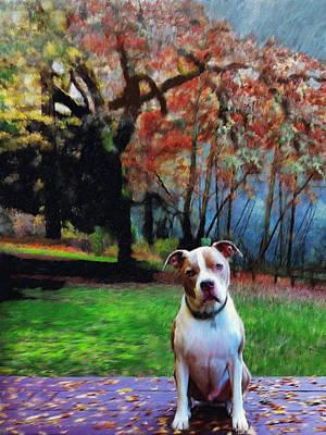 Pitbull Painting - Pit Bull Dog Portrait by Enzie Shahmiri