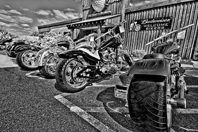 Hog Photograph - Pit Stop by Ches Black