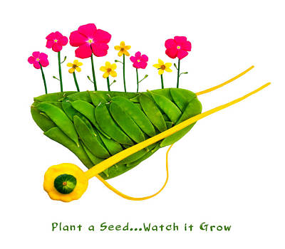 Plant  A Seed...watch It Grow - Captioned Print by Frederica Georgia