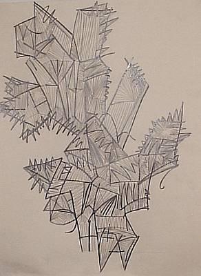 Plant Original by William Douglas