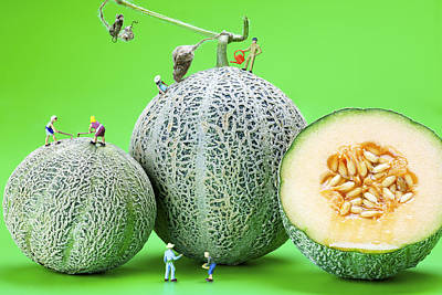 Planting Cantaloupe Melons Little People On Food Print by Paul Ge