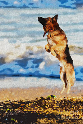 Retrievers Digital Art - Playing Dog  by Manjot Singh Sachdeva
