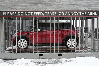 Please Do Not Feed Tease Or Annoy The Mini Print by Teresa Zieba