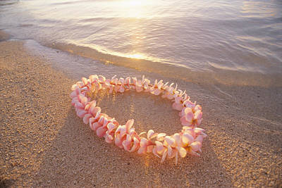 Plumeria Lei Shoreline Print by Mary Van de Ven - Printscapes