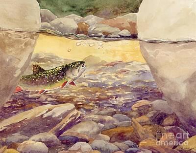 Pocket Water Brook Trout Print by Trevor Lewis